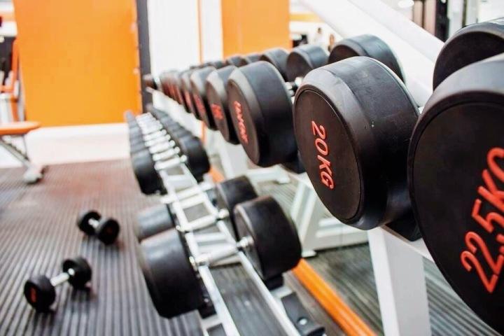 Weight Training vs.Cardio